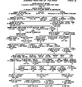 picture showing the genealogy of the Hunters of Polmood
